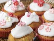 Varios cupcakes helados y decorados - foto de stock