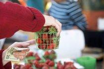 Woman buying strawberries — Stock Photo