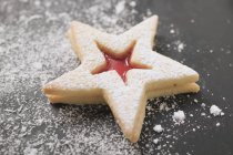 Jam biscuit with icing sugar — Stock Photo