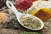 Fennel seeds in porcelain spoon on assorted spices — Stock Photo
