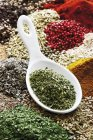 Closeup view of dried oregano in spoon on assorted spices — Stock Photo