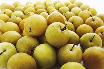 Свежий желтой сливы — стоковое фото