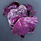 Red ripe cabbage — Stock Photo