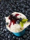 Gelato alla vaniglia con salsa di mirtilli — Foto stock