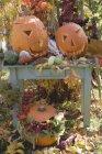 Garden decoration with pumpkins — Stock Photo