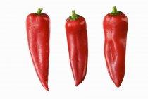 Червоний вказав перці — стокове фото
