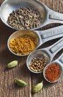 Vista superior de cerca de una cuchara dosificadora con comino, cúrcuma, semillas de mostaza, chile en polvo y cardamomo - foto de stock