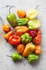Свіжі Habanero перець — стокове фото