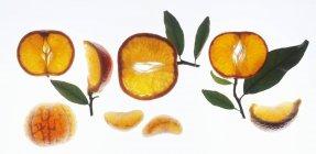 Arance mandarine affettate — Foto stock