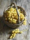 Fresh ripe white currants — Stock Photo