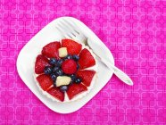 Blueberry and Pineapple Tart — Stock Photo