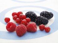 Framboesas frescas com framboesas e amoras — Fotografia de Stock