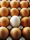 Ovos na fila — Fotografia de Stock