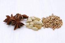 Anice stellato e semi di coriandolo — Foto stock
