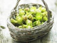 Avellanas frescas verdes - foto de stock