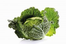 Green savoy cabbage — Stock Photo