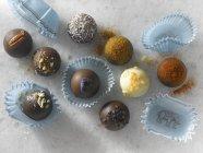 Nueve trufas de chocolate gourmet - foto de stock