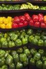 Свежий красочный перец — стоковое фото