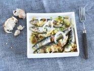 Sardines marinées aux oignons — Photo de stock