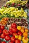 Verdura fresca su un tempo libero Farmers Market Table — Foto stock