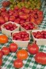 Varietà di pomodori rossi — Foto stock