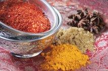 Detailansicht der verschiedenen Gewürzen in Metall Schalen und auf rot gemusterten Stoff — Stockfoto