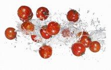 Tomates tigre con agua salpicada - foto de stock