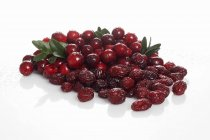 Свіжі а сушені ягоди консервовані — стокове фото