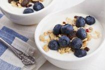 Yogur con cereales y arándanos - foto de stock