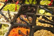 Salatbar mit lokalen Bio-Gemüse — Stockfoto