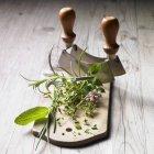 Vista del primo piano di un mazzetto di erbe e un cutter di mezzaluna — Foto stock