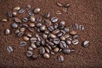 Granos de café en polvo - foto de stock