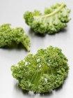 Fresh kale leaves — Stock Photo