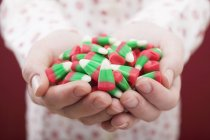 Mãos femininas segurando milho doce — Fotografia de Stock