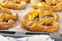 Bretzels sur une plaque à pâtisserie — Photo de stock
