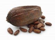 Vaina de cacao y granos de cacao - foto de stock