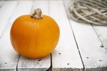 Fresca zucca arancia — Foto stock