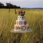 Многоуровневые свадебный торт в поле — стоковое фото