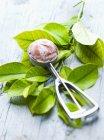 Sorvete em uma colher de sorvete — Fotografia de Stock