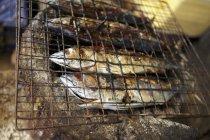Pesce affumicato e alla griglia — Foto stock