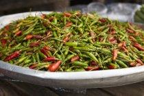 Червоний і зелений перець чилі. — стокове фото