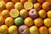 Mele e arance fresche — Foto stock