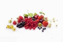 Свіжий літніх ягоди — стокове фото