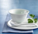 Porcelain bowl on plate with parsley — Stock Photo