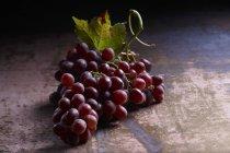 Букет з червоного винограду з листя — стокове фото