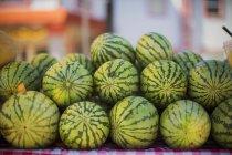 Cocomeri maturi nel marketplace — Foto stock