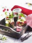 Tarros de frambuesas con mozzarella - foto de stock