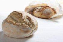 Frisch gebackene Brote — Stockfoto