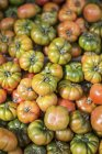 Lots of heirloom tomatoes — Stock Photo