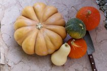 Pumpkins with squashes and gourds — Stock Photo